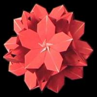 Poinsettia Floral Ball
